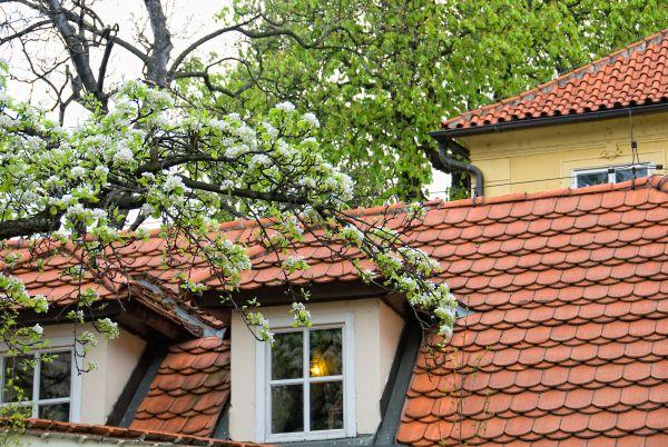 dachy dom dobre